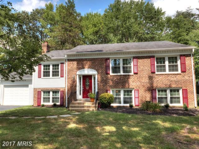 10844 Paynes Church Drive, Fairfax, VA 22032 (#FX10016287) :: Pearson Smith Realty
