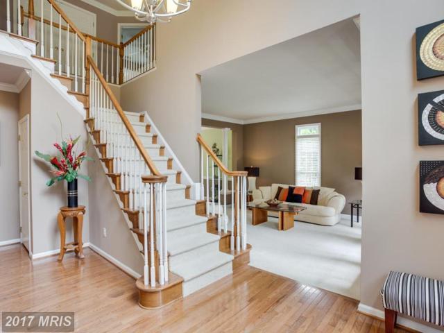 12686 Fox Woods Drive, Herndon, VA 20171 (#FX10016388) :: Provident Real Estate