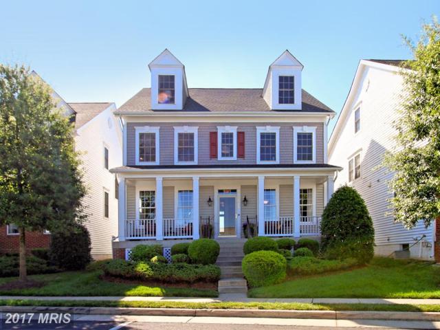 5675 General Johnston Place, Centreville, VA 20120 (#FX10016908) :: Provident Real Estate