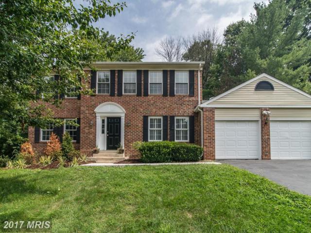 12012 Sugarland Valley Drive, Herndon, VA 20170 (#FX10017211) :: Provident Real Estate