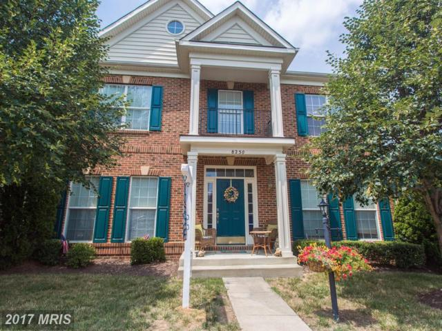 8250 Laurel Heights Loop, Lorton, VA 22079 (#FX10018660) :: Pearson Smith Realty
