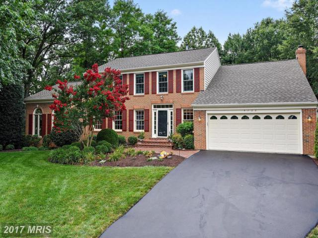 4706 Lewis Woods Court, Chantilly, VA 20151 (#FX10018855) :: Pearson Smith Realty
