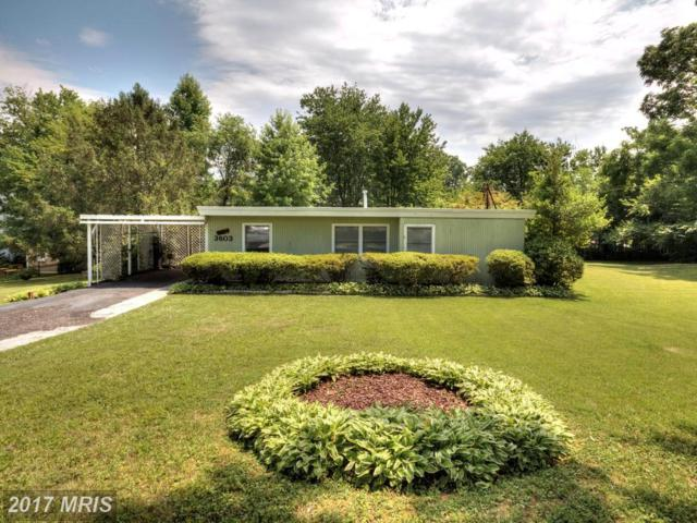 3603 Michael Court, Annandale, VA 22003 (#FX10021745) :: Pearson Smith Realty