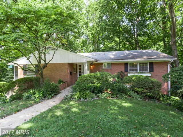 7002 Aronow Drive, Falls Church, VA 22042 (#FX10022180) :: Pearson Smith Realty