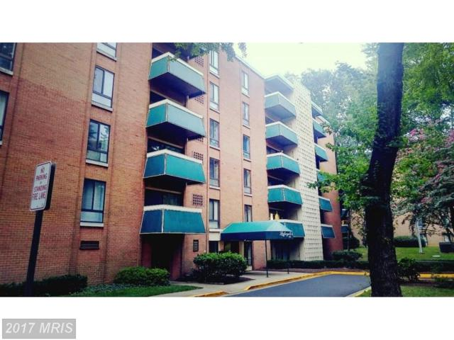6141 Leesburg Pike #305, Falls Church, VA 22041 (#FX10022258) :: Pearson Smith Realty