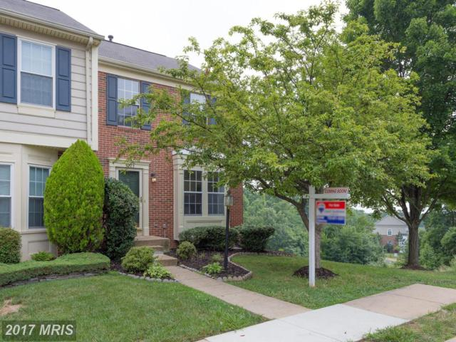 5225 Dunstable Lane, Alexandria, VA 22315 (#FX10022297) :: Browning Homes Group
