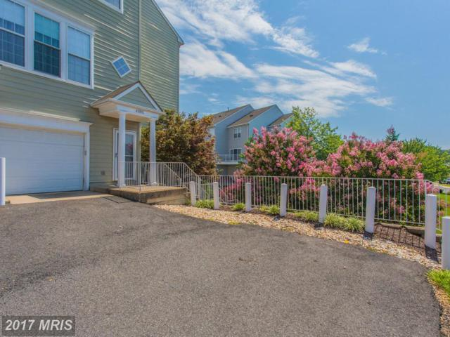 6325 Eagle Ridge Lane 31 C, Alexandria, VA 22312 (#FX10023344) :: Pearson Smith Realty