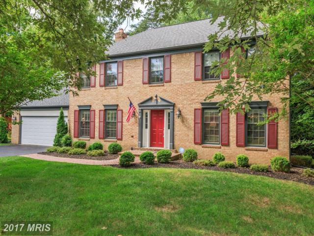 7806 South Valley Drive, Fairfax Station, VA 22039 (#FX10023424) :: Browning Homes Group