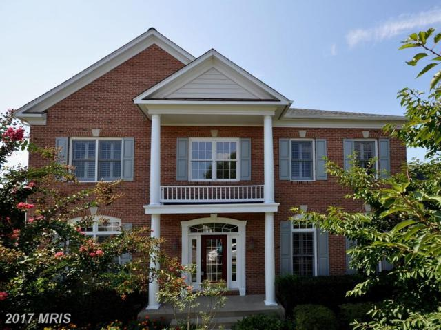 13801 Cutleaf Court, Chantilly, VA 20151 (#FX10025203) :: The Vashist Group