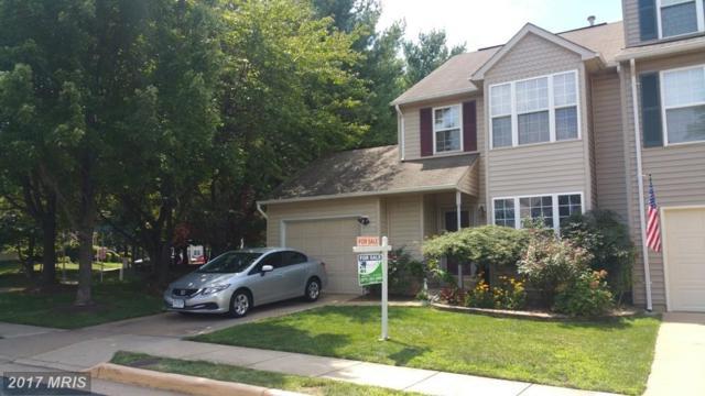 13554 Darter Court, Clifton, VA 20124 (#FX10025318) :: Browning Homes Group