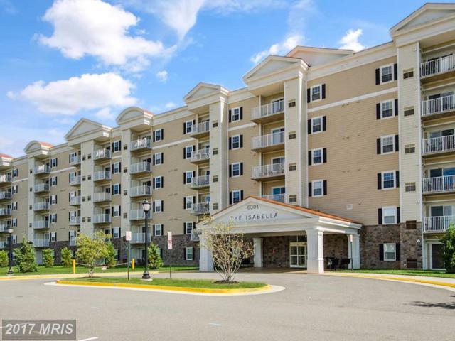 6301 Edsall Road #205, Alexandria, VA 22312 (#FX10026459) :: Pearson Smith Realty
