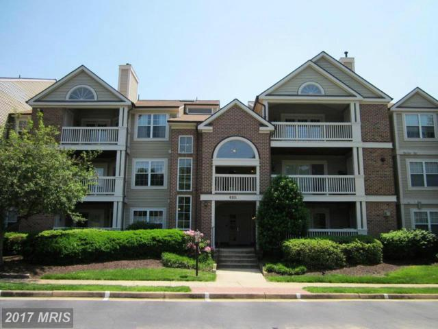 6111 Wigmore Lane K, Alexandria, VA 22315 (#FX10028238) :: Browning Homes Group