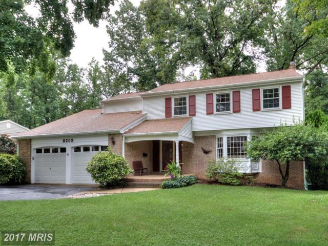 8203 Langbrook Road, Springfield, VA 22152 (#FX10028343) :: Pearson Smith Realty