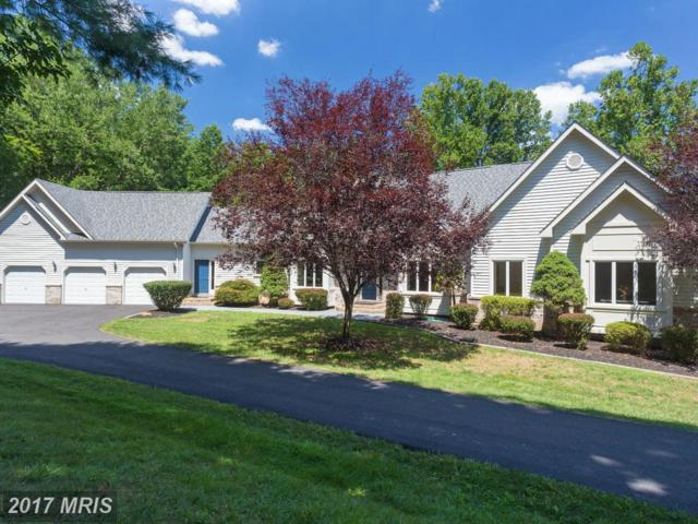 7420 Dunquin Court, Clifton, VA 20124 (#FX10029430) :: Browning Homes Group