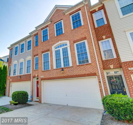9134 Cook Inlet Drive, Fort Belvoir, VA 22060 (#FX10029661) :: Pearson Smith Realty