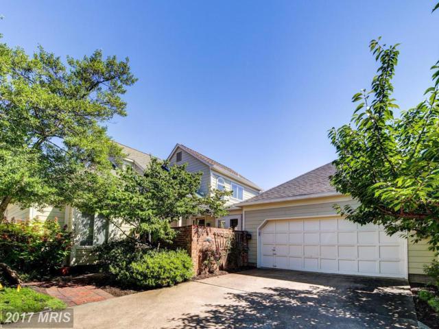 3122 Jerman Lane, Oakton, VA 22124 (#FX10029801) :: Browning Homes Group