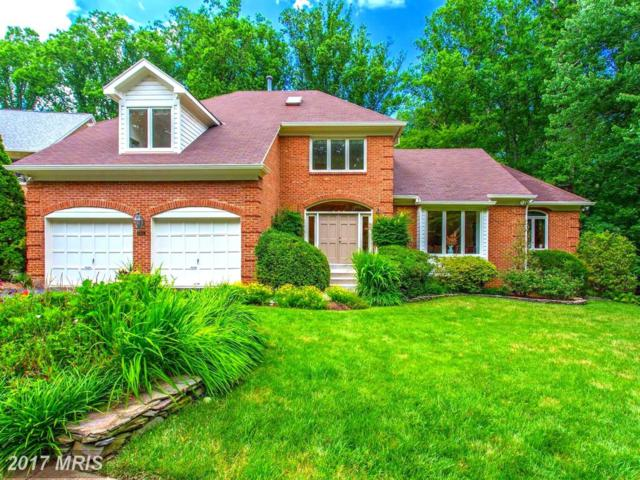 1536 Poplar Place, Mclean, VA 22101 (#FX10030072) :: Browning Homes Group