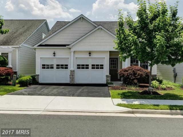 8873 White Orchid Place, Lorton, VA 22079 (#FX10031271) :: Browning Homes Group