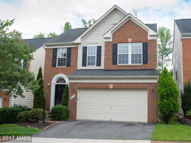 8013 George Fox Place, Lorton, VA 22079 (#FX10032451) :: Browning Homes Group