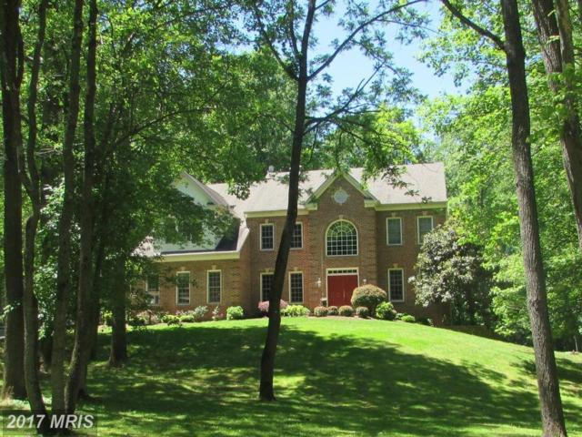 7042 Balmoral Forest Road, Clifton, VA 20124 (#FX10032615) :: Browning Homes Group