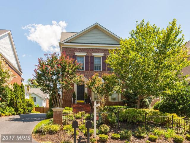 1453 Buena Vista Avenue, Mclean, VA 22101 (#FX10033190) :: AJ Team Realty