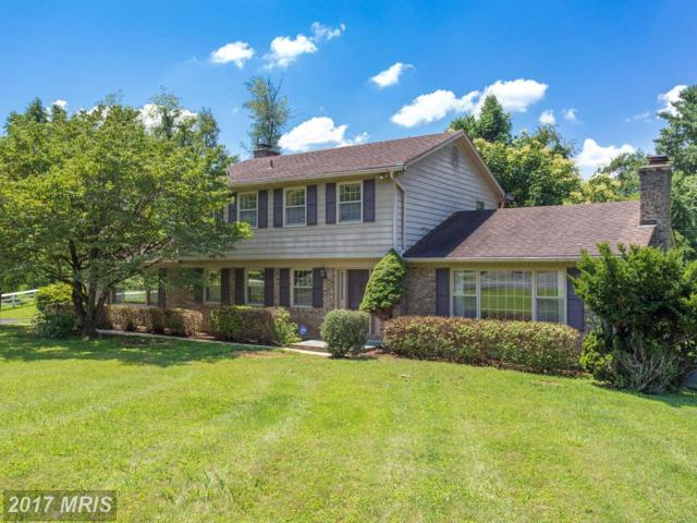 1200 Claude Court, Great Falls, VA 22066 (#FX10033435) :: Browning Homes Group