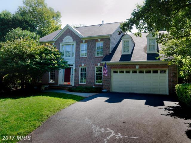 2003 Annies Way, Vienna, VA 22182 (#FX10033490) :: The Vashist Group