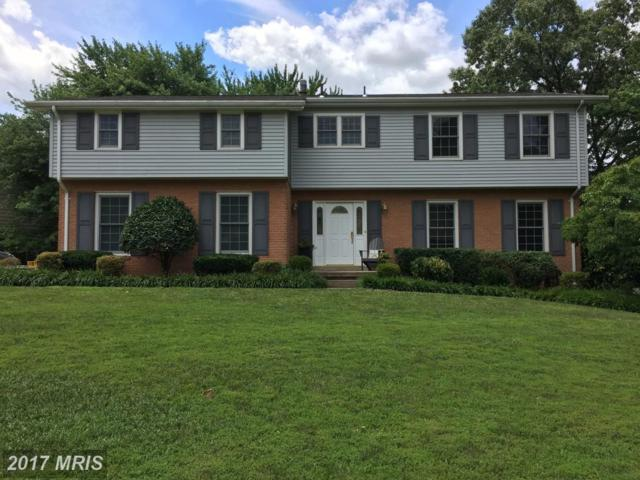 2335 Creek Drive, Alexandria, VA 22308 (#FX10033866) :: Pearson Smith Realty