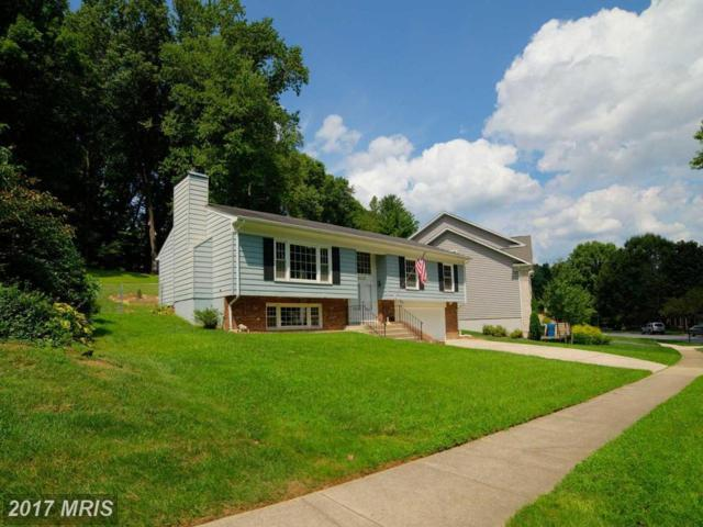 6118 Lundy Place, Burke, VA 22015 (#FX10033909) :: AJ Team Realty