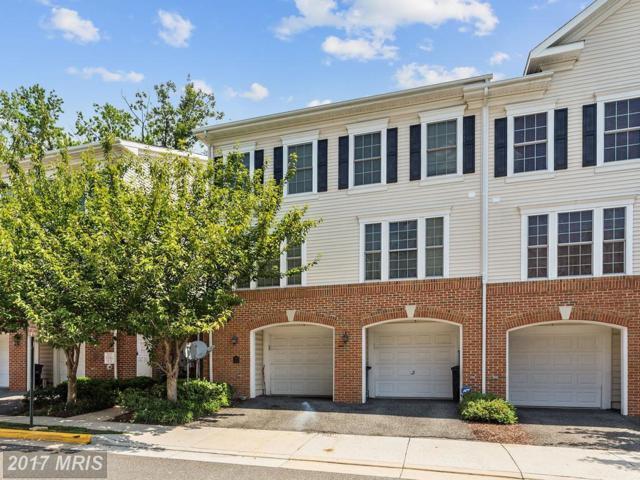 7133 Mason Grove Court #14, Alexandria, VA 22306 (#FX10033984) :: Pearson Smith Realty