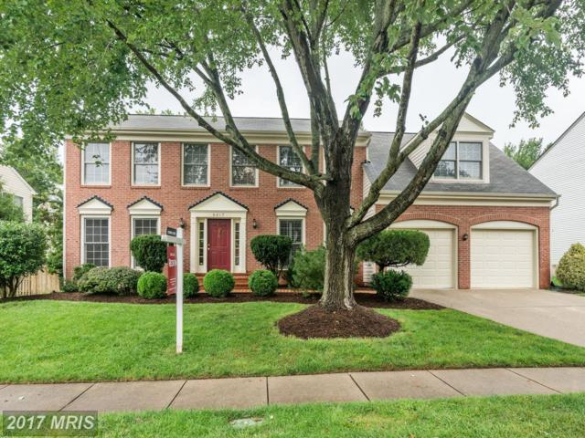 6817 Compton Heights Circle, Clifton, VA 20124 (#FX10034253) :: Pearson Smith Realty