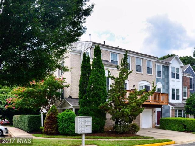 11814 Rockaway Lane #32, Fairfax, VA 22030 (#FX10034912) :: RE/MAX Gateway