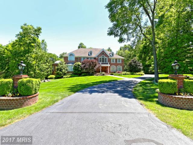15408 Kentwell Circle, Centreville, VA 20120 (#FX10035569) :: Jacobs & Co. Real Estate