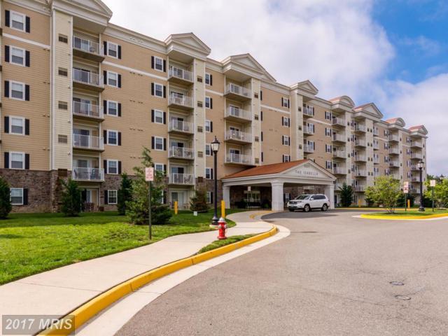 6301 Edsall Road #116, Alexandria, VA 22312 (#FX10036173) :: MidAtlantic Real Estate