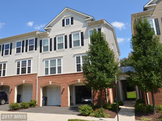 7010 Huntley Run Place #143, Alexandria, VA 22306 (#FX10036286) :: MidAtlantic Real Estate