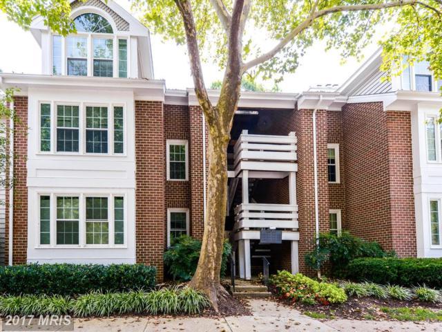 11146 Beaver Trail Court #11146, Reston, VA 20191 (#FX10036437) :: Jacobs & Co. Real Estate