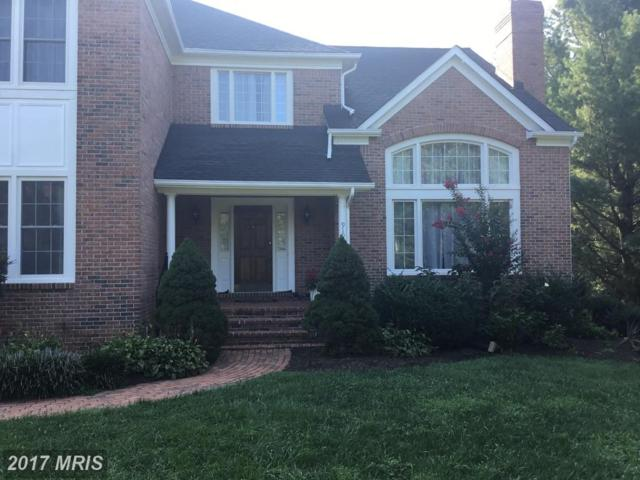 919 Winstead Street, Great Falls, VA 22066 (#FX10036795) :: Circadian Realty Group
