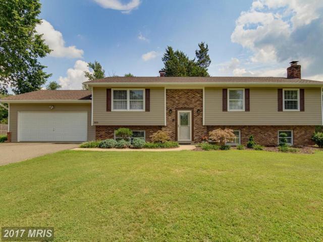 3835 Maple Hill Road, Fairfax, VA 22033 (#FX10037384) :: Pearson Smith Realty