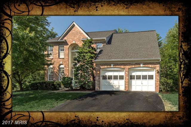 12912 Cedar Glen Lane, Oak Hill, VA 20171 (#FX10038012) :: The Vashist Group