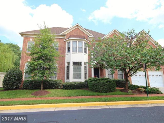 12820 Falcon Wood Place, Fairfax, VA 22033 (#FX10038966) :: Circadian Realty Group