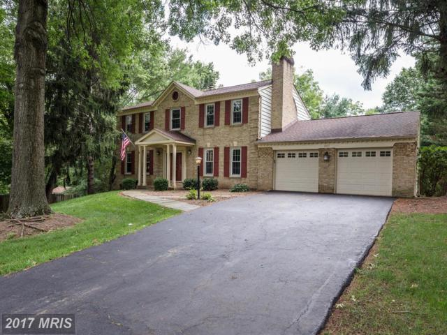 1017 Cup Leaf Holly Court, Great Falls, VA 22066 (#FX10040228) :: Pearson Smith Realty