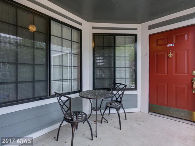 7004 Irwell Lane B, Alexandria, VA 22315 (#FX10040464) :: Arlington Realty, Inc.
