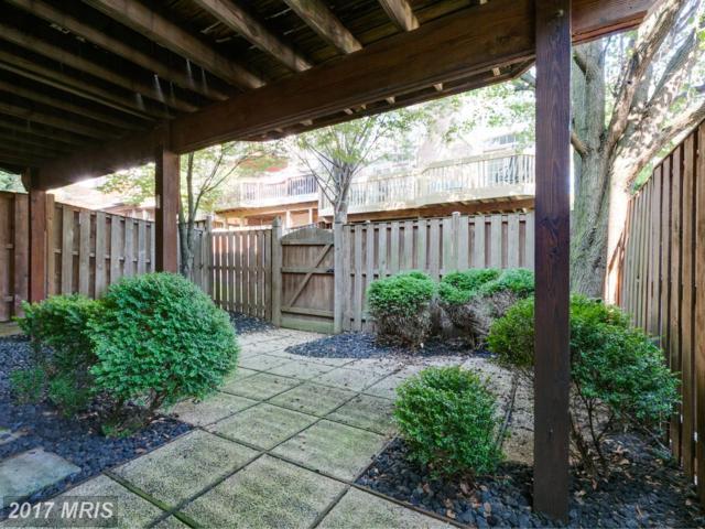 6547 Milva Lane, Springfield, VA 22150 (#FX10043018) :: Arlington Realty, Inc.