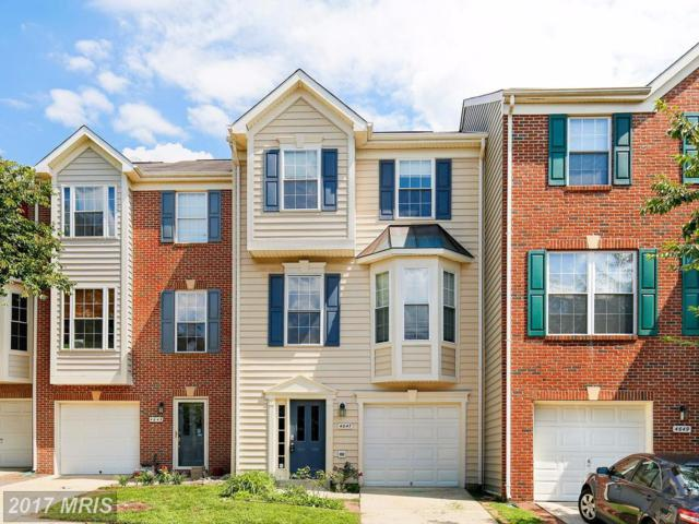 4647 Deerwatch Drive, Chantilly, VA 20151 (#FX10044034) :: Pearson Smith Realty