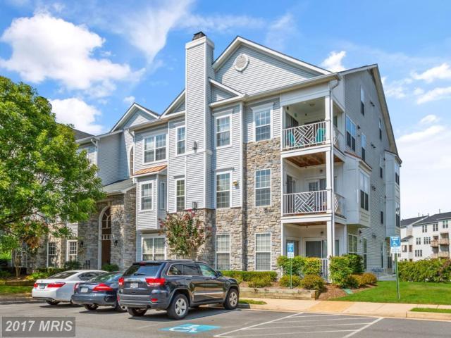 5924 Founders Hill Drive #203, Alexandria, VA 22310 (#FX10046482) :: Pearson Smith Realty
