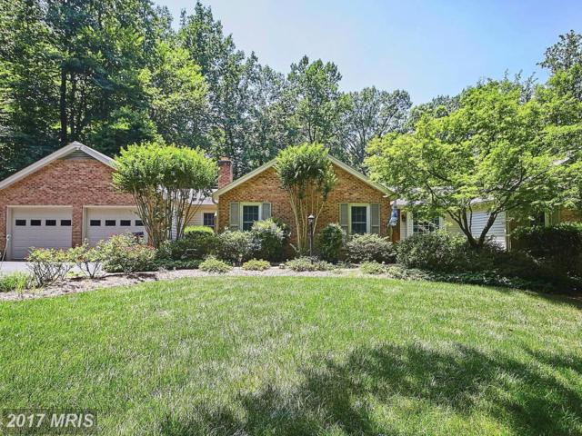11160 Deuaughn Court, Fairfax Station, VA 22039 (#FX10047897) :: Pearson Smith Realty