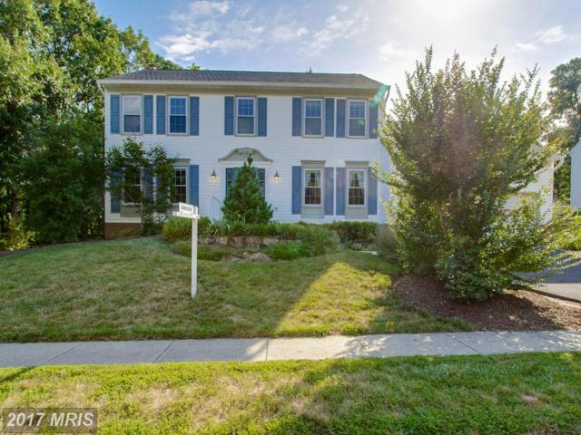 6520 Trillium House Lane, Centreville, VA 20120 (#FX10048768) :: Pearson Smith Realty