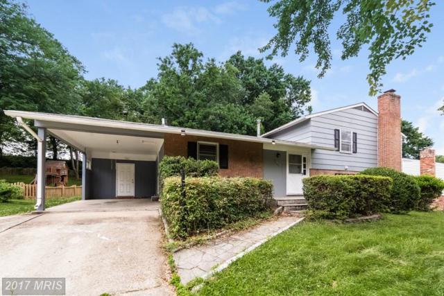 7104 Galgate Drive, Springfield, VA 22152 (#FX10049461) :: Pearson Smith Realty