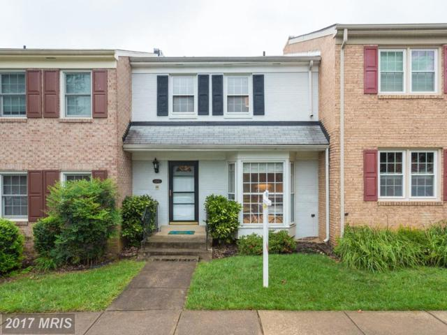 4462 Airlie Way, Annandale, VA 22003 (#FX10049984) :: Pearson Smith Realty