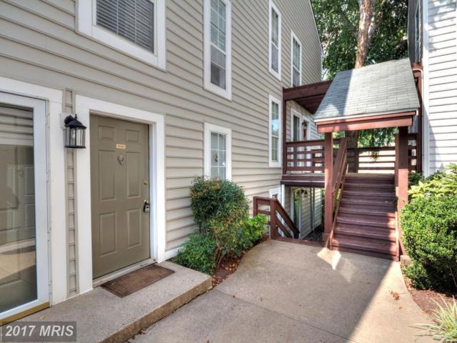 10100 Oakton Terrace Road #10100, Oakton, VA 22124 (#FX10050229) :: Pearson Smith Realty